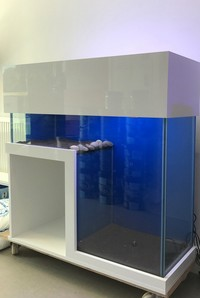 Custom Built Bespoke Aquarium - unique with a space for fridge / filter / other