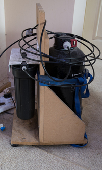 Complete 600 litre Malawi set up for sale
