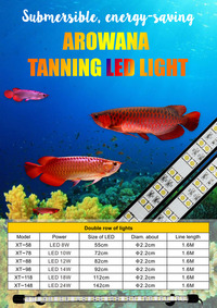 5ft Red Arowana Tanning Light - SALE