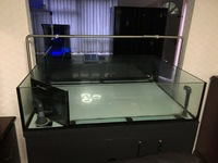 Professional Coral Tank full Setup For Sale �5