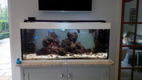 240 litre marine tank complete set-up �0 with many accessories