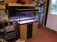 fluval roma 125 compleat set up with working lights