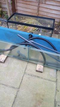 MARINE FISH / 5FT X 1FT X 1FT SHOP DISPLAY TANK SECTIONED INTO 2 EQUAL SIZE TANKS