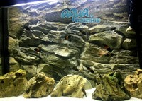 Fluval Vicenza 180 aquarium rock background real 3D for 99