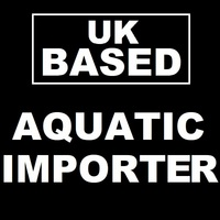 Do you want to Import Fish? Marine/Corals & Freshwater available Limited spaces