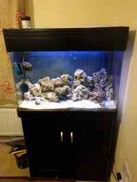 200L marine tank for sale