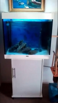 Jewel Lido 200 tank for sale