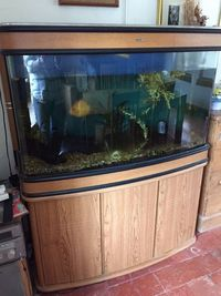Manchester M45 Feb 2018 Update - Big Tanks BONANAZA - Over 200 pre-owned ORNAMENTS + Bogwood, Air pumps, Plants etc plus loads of other stuff. From �upwards. Viewings welcome Manchester M45