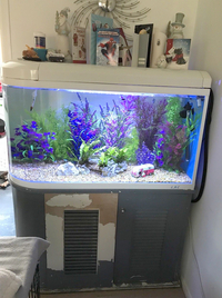 Manchester M45 Feb 2018 Update WEISNICK AQUARIUMS Great chance to get a bargain. Over 60 pre-owned, tanks plus loads of accessories. From �upwards. Viewings welcome Manchester M45
