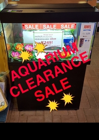 💥💥AQUARIUM CLEARANCE SALE