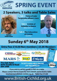 BCA Spring Convention 6th May