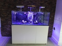 Red Sea reefer 525xl,nyos skimmer,Aqua illumination vega lights, ecotech mp40 vortech