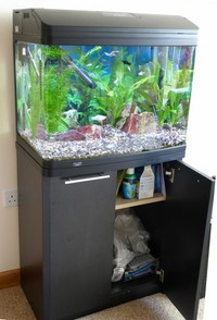 Aqua One 620T 90 litre tank on Black 2 door Cabinet with Fish & accessories