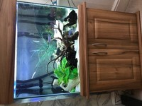 250 litre tank with all equipment and accessories