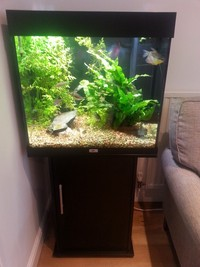 JUWEL LIDO 120 Litre aquarium fish tank with cabinet �5