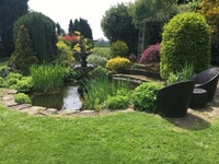 Pond Maintenance in Leicestershire and surrounding areas