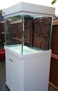 Betta Marine Aquarium & sump