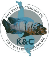 K&C Rift Valley Cichlids UK