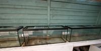 three fishtanks drilled to take 50mm tank connectors.twelve feet long,to simulate a stream