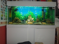 �0 ONLY BARGAIN/LARGE BESPOKE AQUARIUM IN WHITE,4FT 6 inches LONG X 2FT HIGH X 20 inches DEPTH.