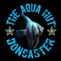 The Aqua Hut - Doncaster: Current Stocklist