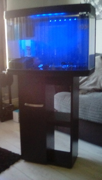 Interpet 64lt r aquarium with stand as new only �,collection only