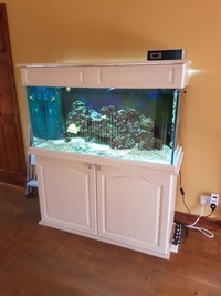 4ft - 270 Litre full setup marine saltwater reef tank complete with cabinet and sump