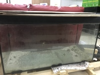 3ft tank with sump