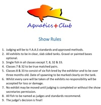 Aquatics Plus Summer Show