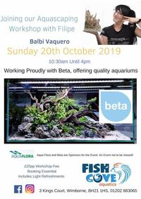 Aquascaping workshop with Balbi