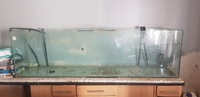 7ft fish tank for sale