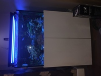 300 Liter Braceless, optiwhite glass marine stand and tank with sump. Complete set up