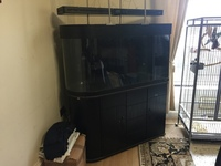 Tank for sale �0