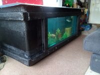 Sold pending collection on 21st AMAZING available now tropical fibreglass pond, tank,aquarium, fibreglass with viewing window