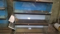 10 Fish Tanks for sale, 3 foot and 4 foot.