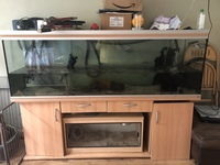6ft6 Rena Tank, Cabinet and lighting