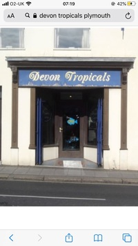 Vacant fish shop / Commerical premises available To Let