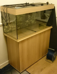 Juwel Rio 180 with cabinet for Sale.