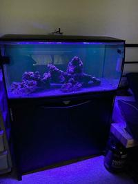 Marine Tank Set up All included