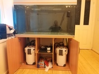 4ft rena fish tank for sale