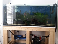5x2x2 tank with stand fx4 filter fluval aquasky 2.0 light and vecton v600 uv sterilizer with pump