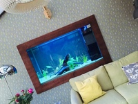 Large aquarium in the wall