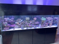 Selling up everything including large tank