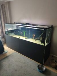 7x2x2 Tank & Equipment (Open to offers)