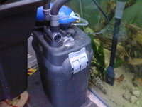 FOR SALE 2 x 2ft square glass aquariums and filters etc